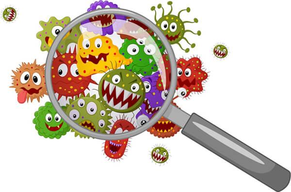 bakterie pod lupou